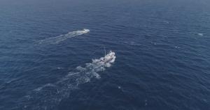 Vista aérea en dron de pesca del atún. Dronspain para el Escarabajo Verde
