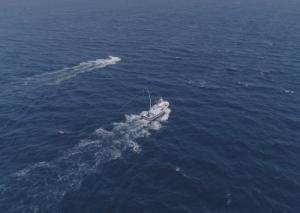 Proyecto Filmación Aérea con Dron para el programa Escarabajo Verde: Thunnus Thynnus y la pesca del atún por Dron Spain